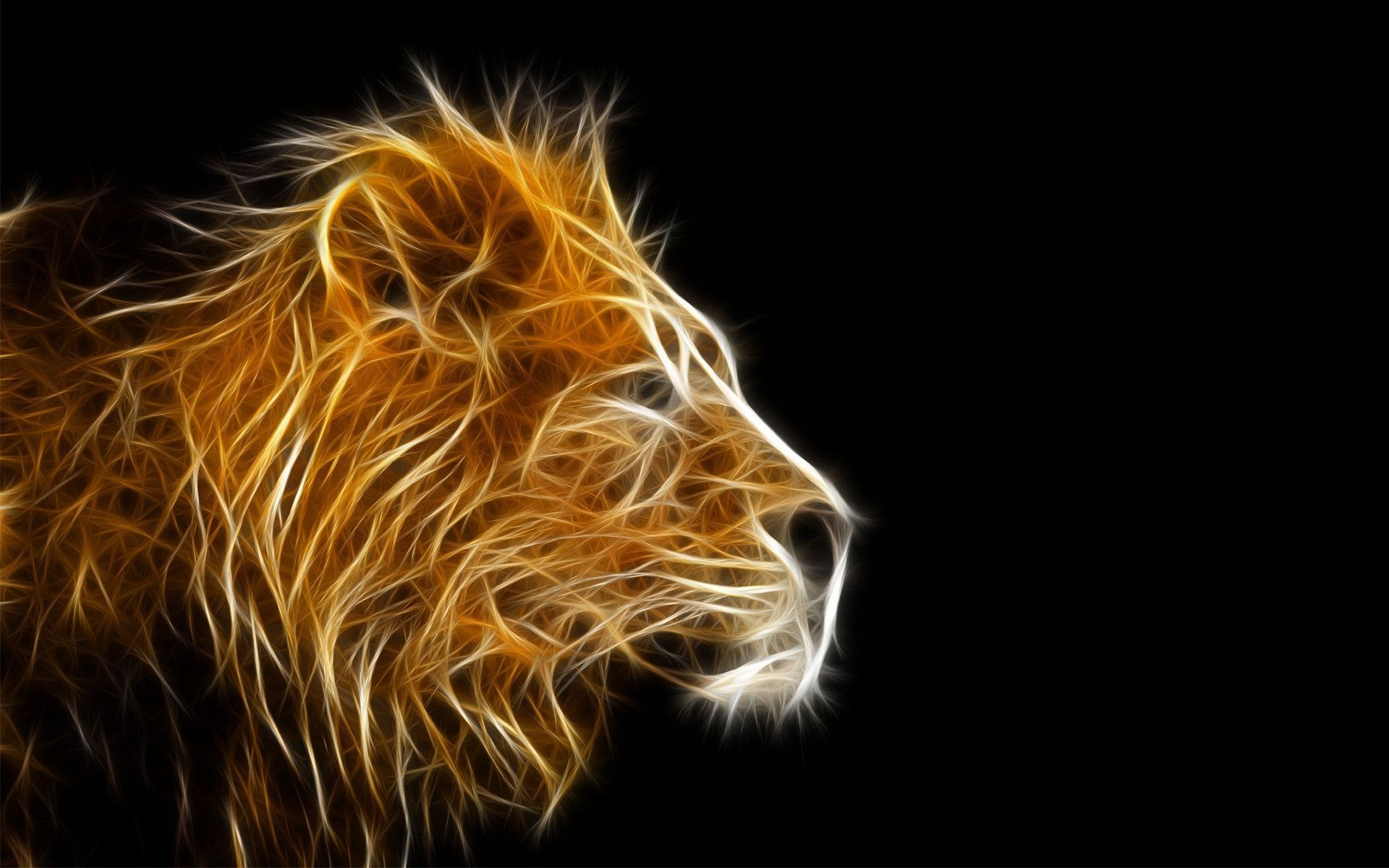 Lion Desktop wallpaper hd widescreen free download 1366x768