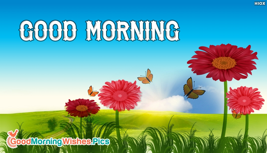 Good Morning Images For Whatsapp Free Download : Download free images of good morning