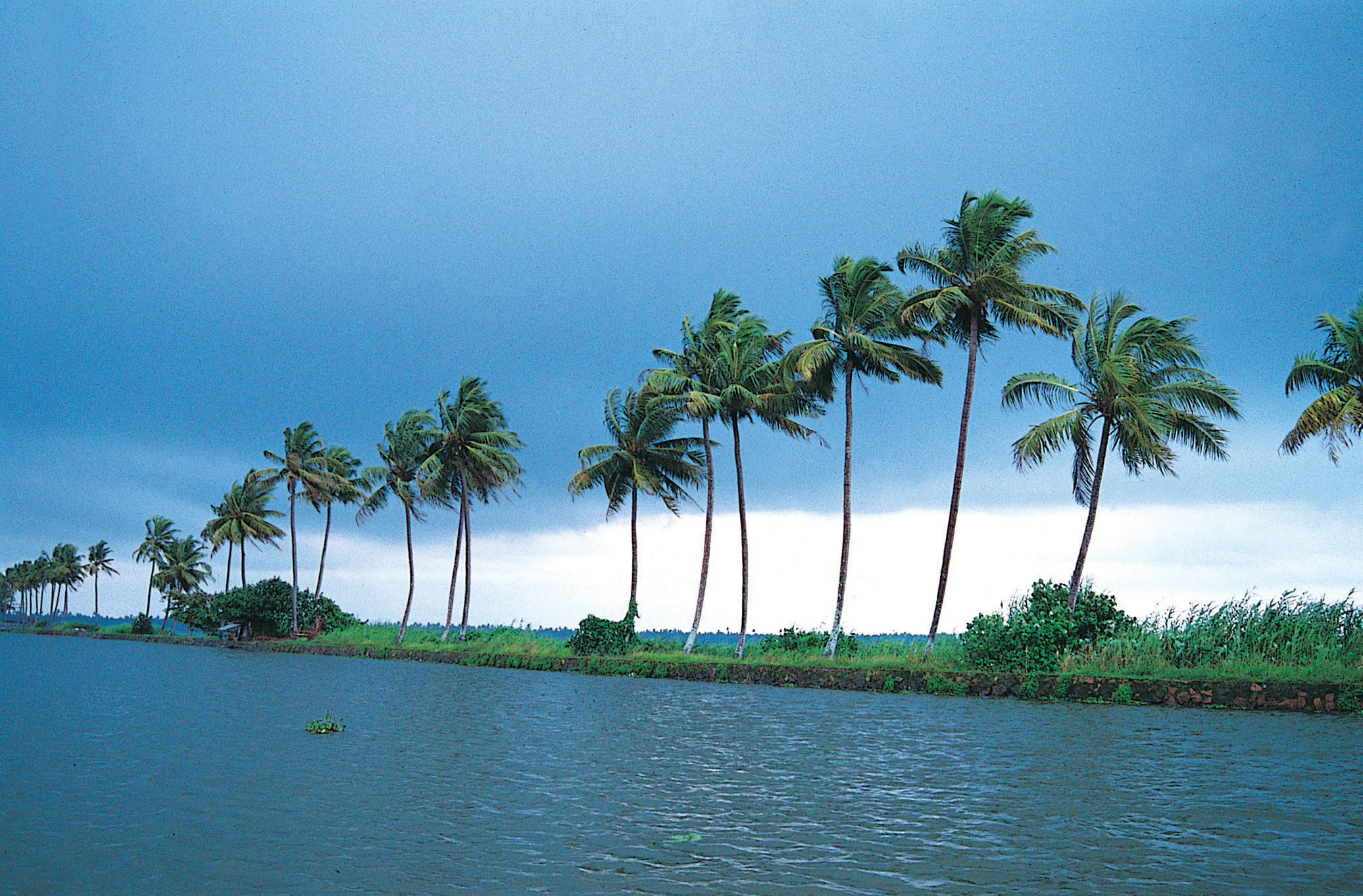 Download kerala wallpapers nature