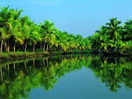 Download kerala wallpapers backwaters