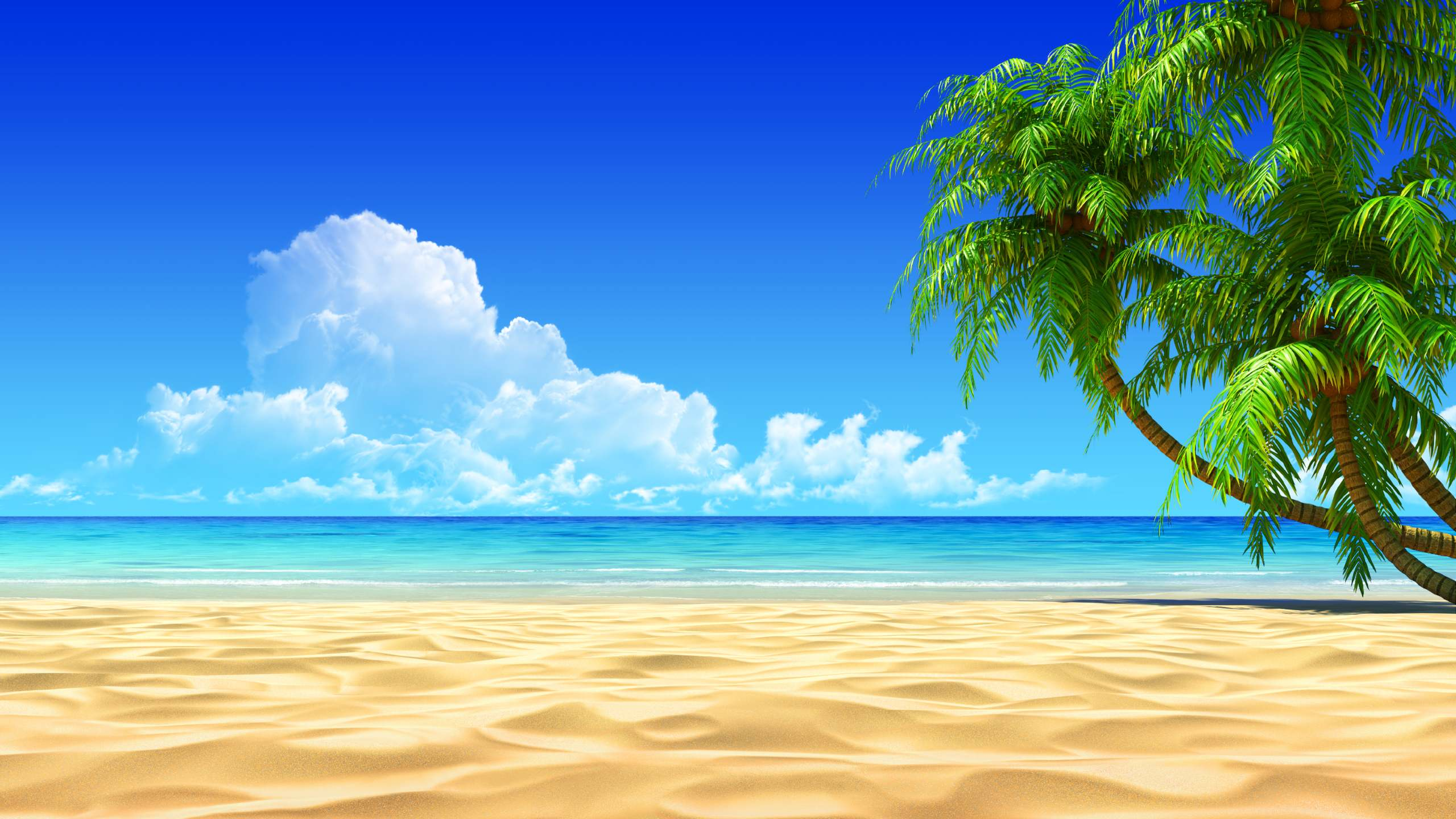 Beach Background images hd free download
