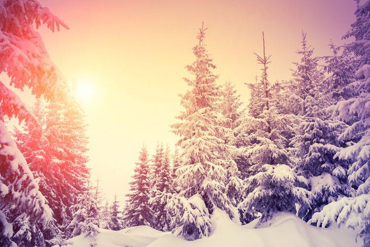 Schöne bilder reiseziele fur januar