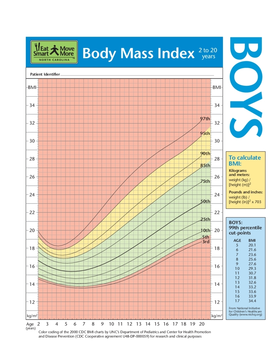 Outstanding Bmi Index Chart Template Photos - Best Resume Examples ...